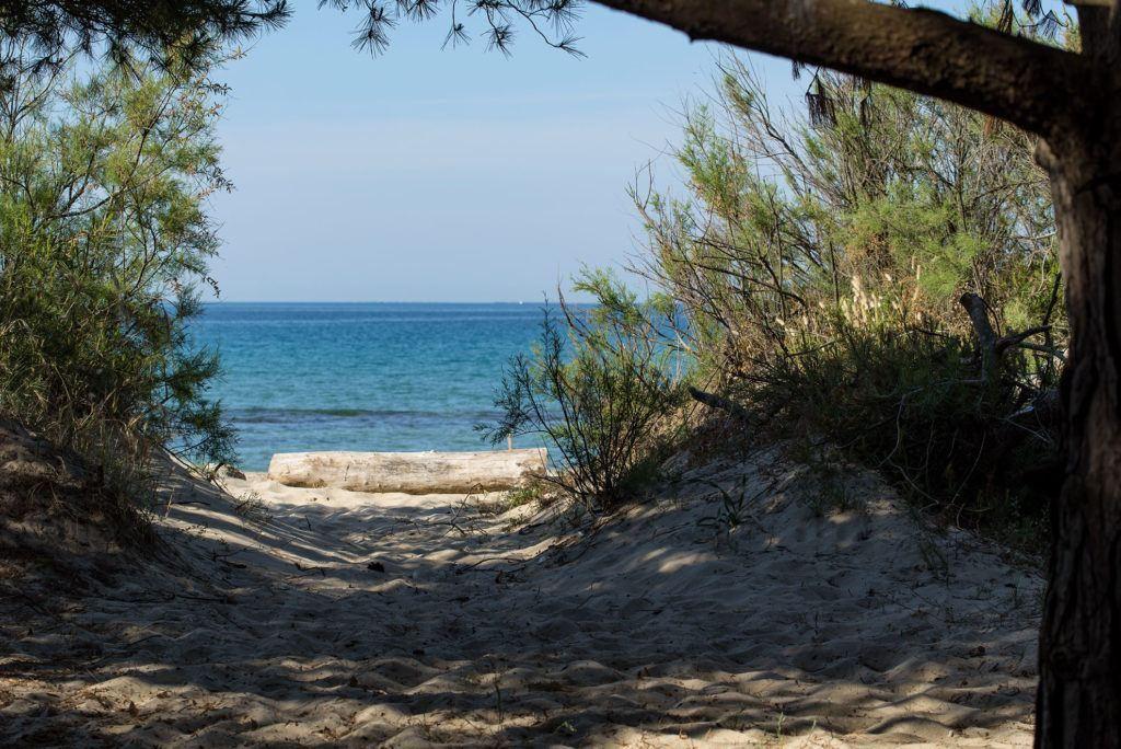 Offerte Vacanze Toscana Mare a San Vincenzo - Hotel Ciritorno